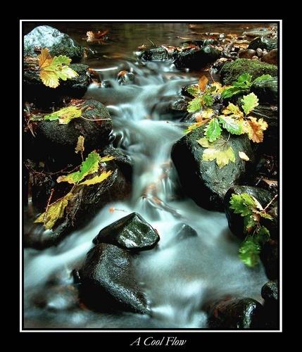 A Cool Flow by MichaelAlex