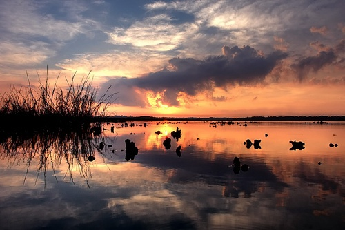 Oysterbeds at Dawn by ThePres
