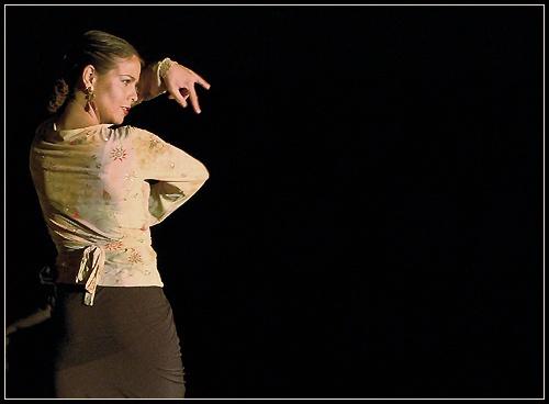 Flamenco 2 by dg2000r