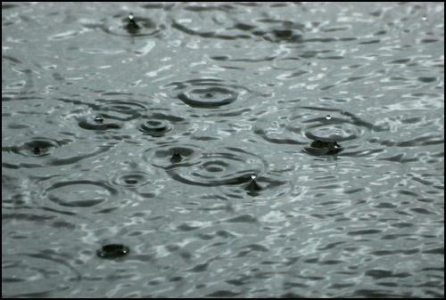 Rain by willbrealey