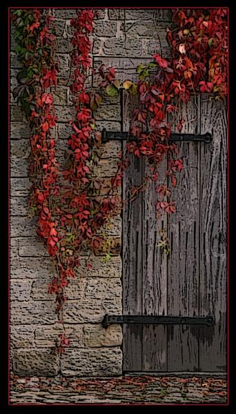 Barn Door by DarkAngel