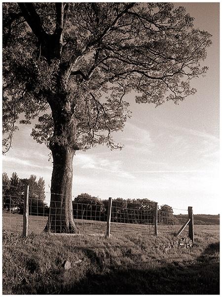Gron Gaer by c_evans99
