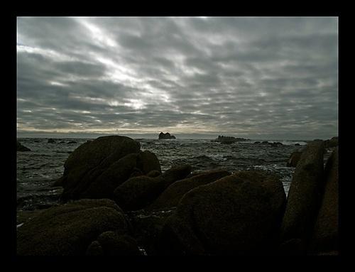 Twilight by mule