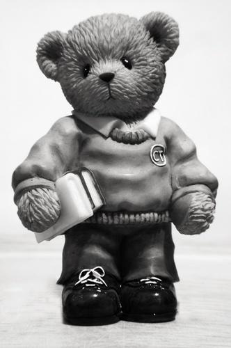 Macro Teddy by snoops