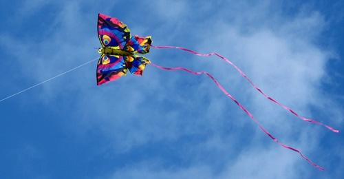 Kite by Fran