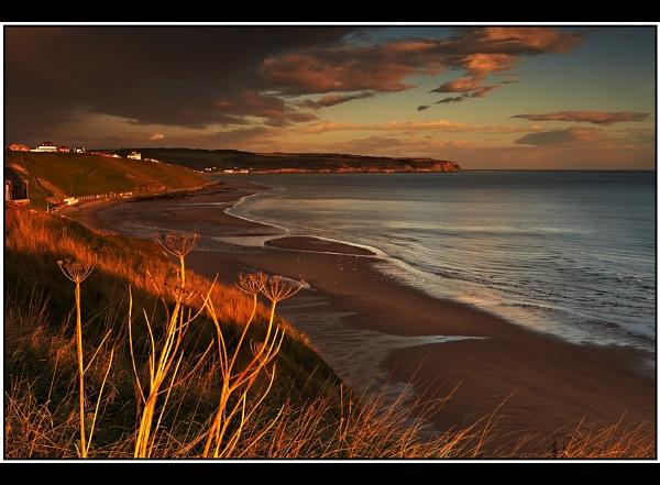 Seaside Cliffs by TonyA