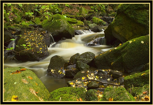 Autumn at Padley by beaniebabe