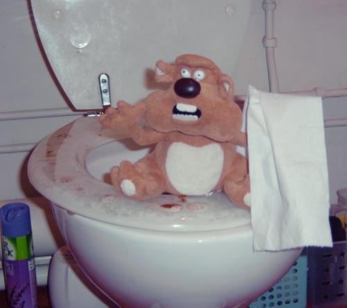 The culprit. by Fred_Bear