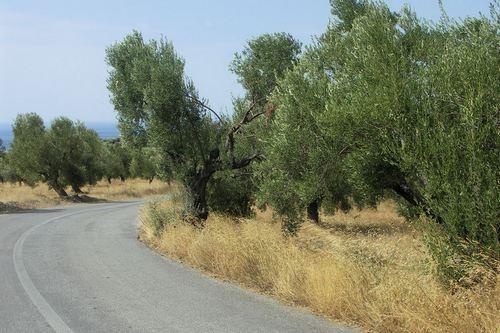 roadscape by avramionut