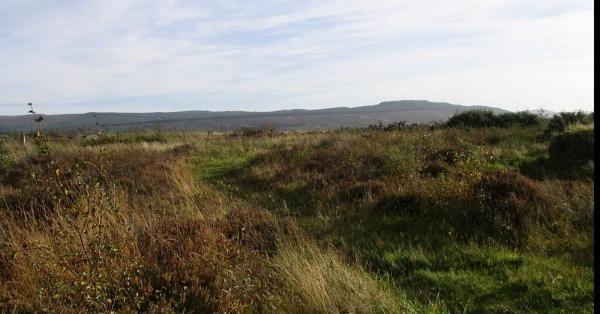 Culloden Battlefield by kaylesh