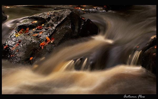 Autumn Flow by martin.w