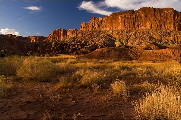 Chasing the Desert Light by billma