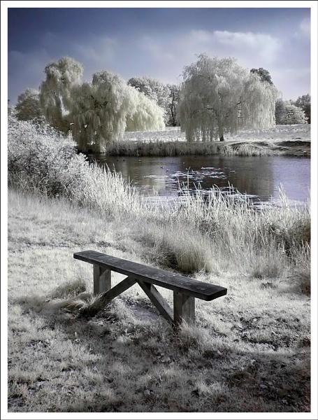 Hampton Wick Pond IR by itsasetamendi