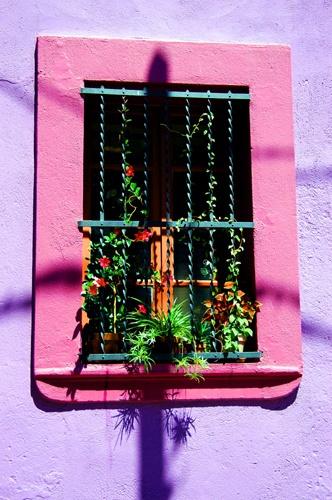 window by Titi