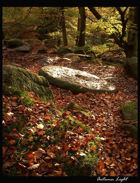 Autumn Light by martin.w