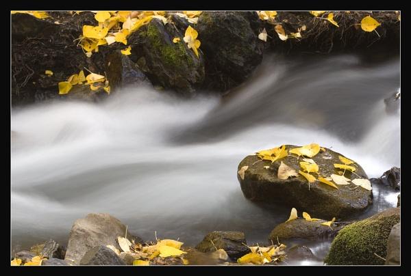 Creek ,Eastern Sierra, California by maures53