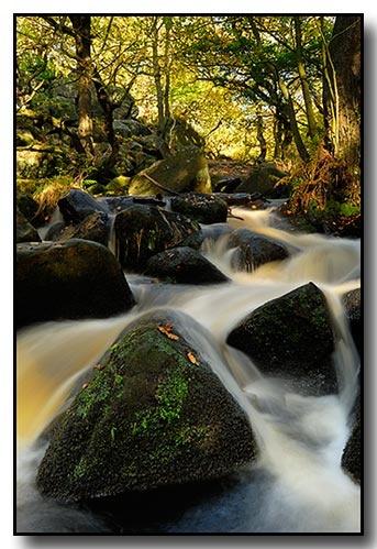 Burbage Brook by Perdiccas
