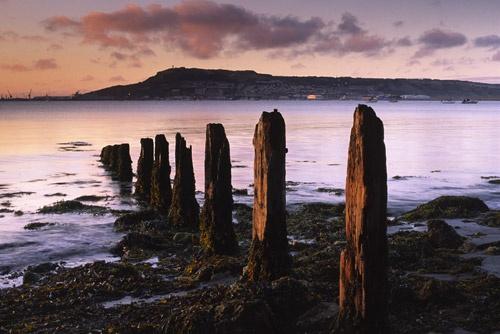 Portland at Dawn by Steve_Atkins