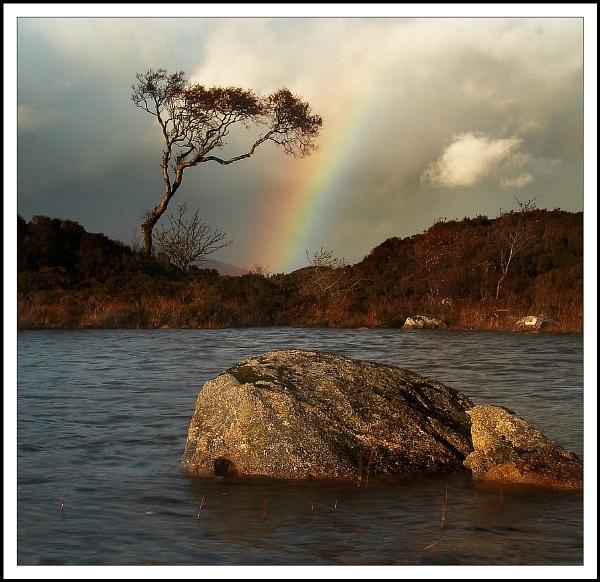 Rainbow by beaniebabe