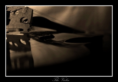 The Violin by andrewrobson