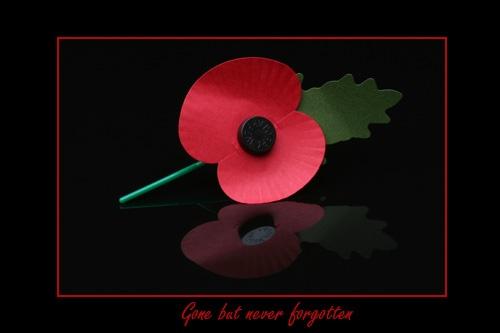 Never forgotten by Gaz_H