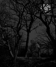 beast in moonlight