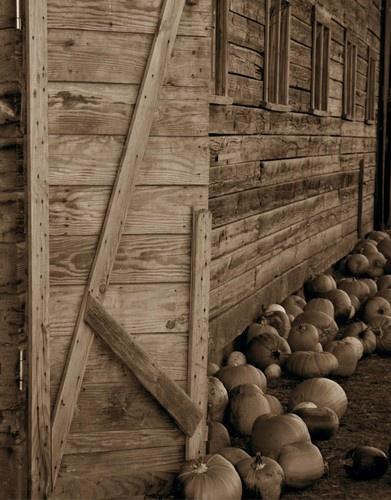 Barn----- by mommy2cutekids
