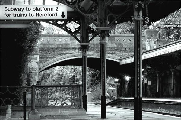 The Station by Kim Walton