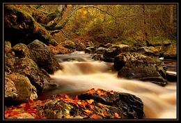 Autumn in Cawdor