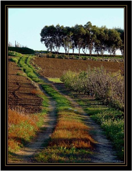 Winding track by KingArthur