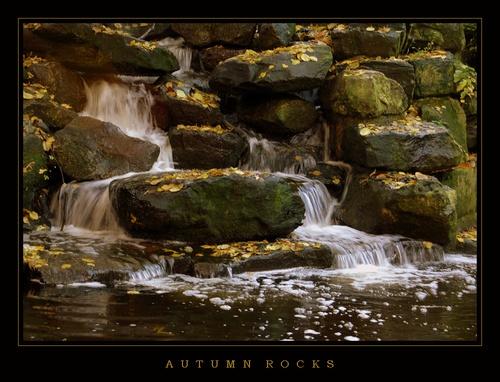 Autumn Rocks by DaisyD50