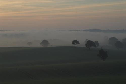 Mist arising by deavilin