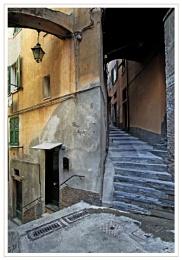 A corner of Corniglia
