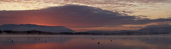 Dawn by Sabreur