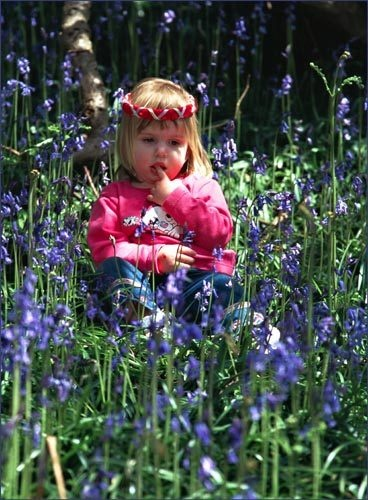 Emily in Bluebells by BRIGHTon_SPARK