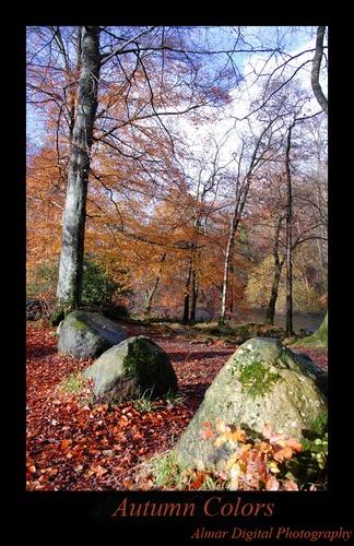 Autumn Colors by almar_digital