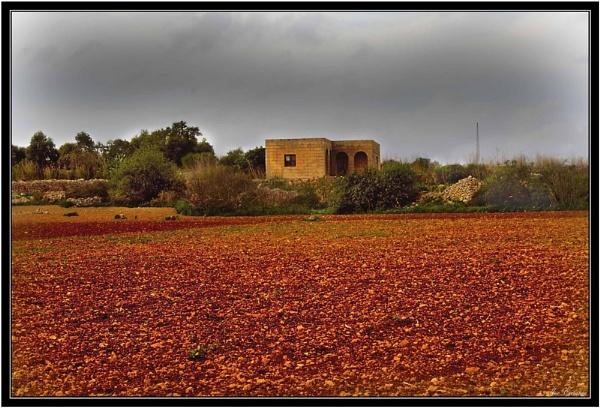 Traditional Farmhouse by KingArthur
