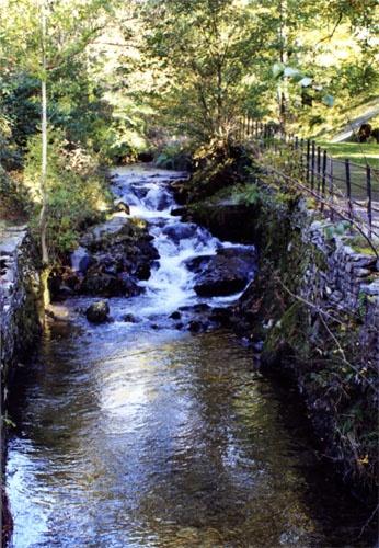 A walk by the stream by mollye