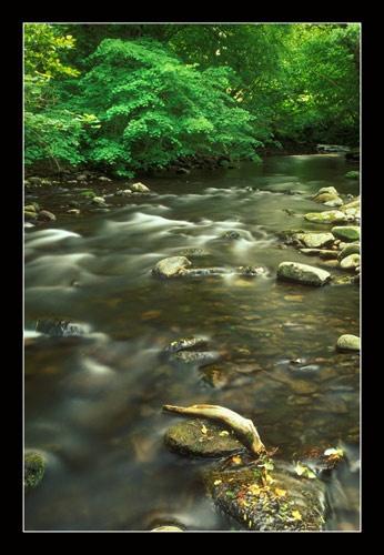 Afon Caerfanell by jond