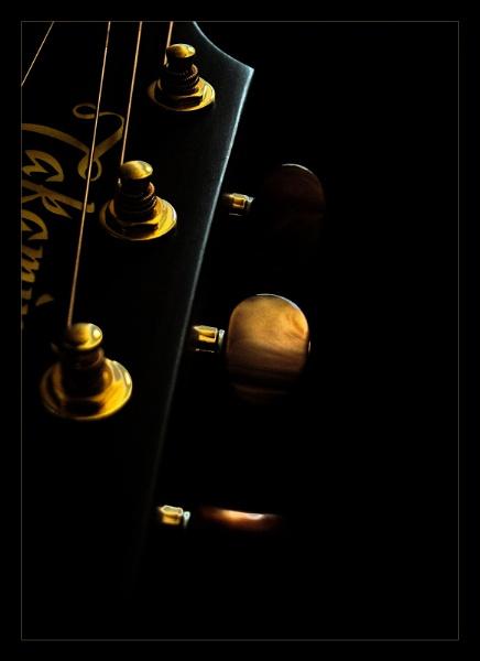 Guitar 3 by cattyal