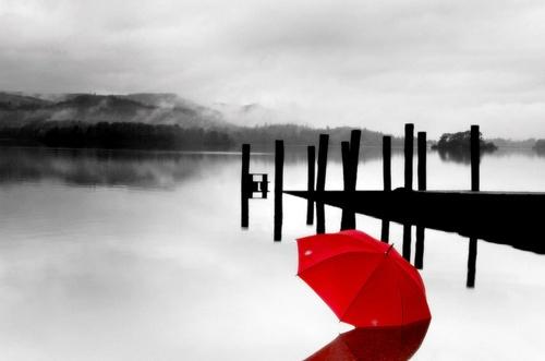 Red by TeresaH