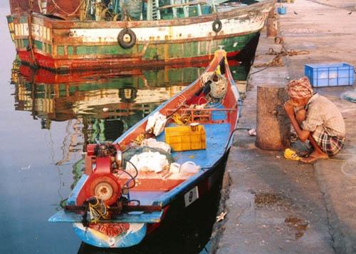 Fishing Yard, Pondicherry, India by KarlmarxEra