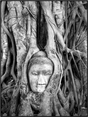 Buddha Head by VanessaK