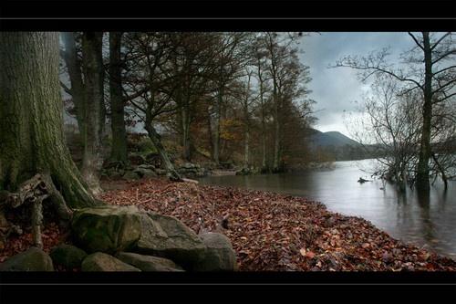 November by becca_cusworth