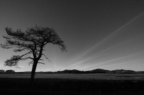 Pentland Hills by Gomez
