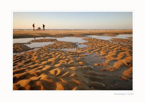 The Beach by DaisyD50