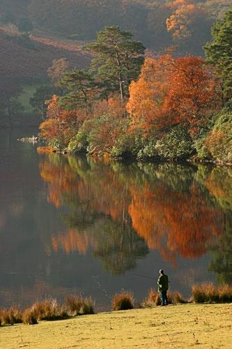 gone fishing by john thompson