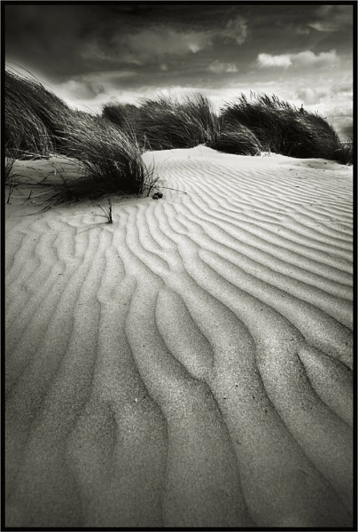 Black Rock Dunes by Mari