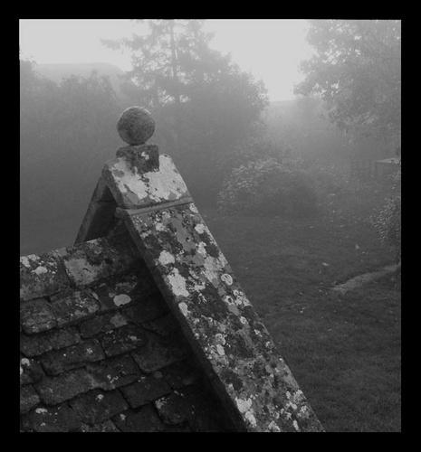 mist by mcgregom