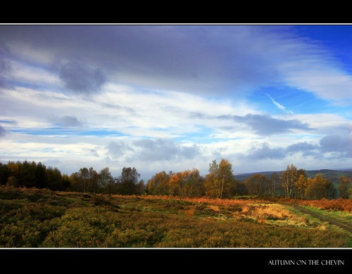 Autumn on the Chevin by JoolsM